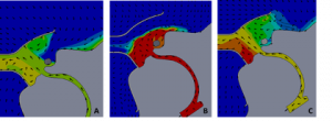 Figure 8. Thermal characteristics (Blue -> Red, 20-37℃) for simulated end-expiratory flow A) FELIX-1 mask alone, B) surgical mask over the face of the model patient, C) surgical mask over the opening aperture of the FELIX-1 interface.